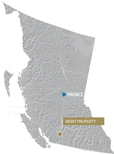 Merit Property